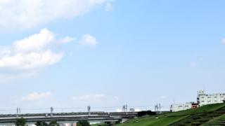 戸田市の飲食店対応優良ゴキブリ駆除業者おすすめ比較ランキング【口コミあり】